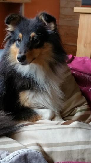 Lola 15 mois 2